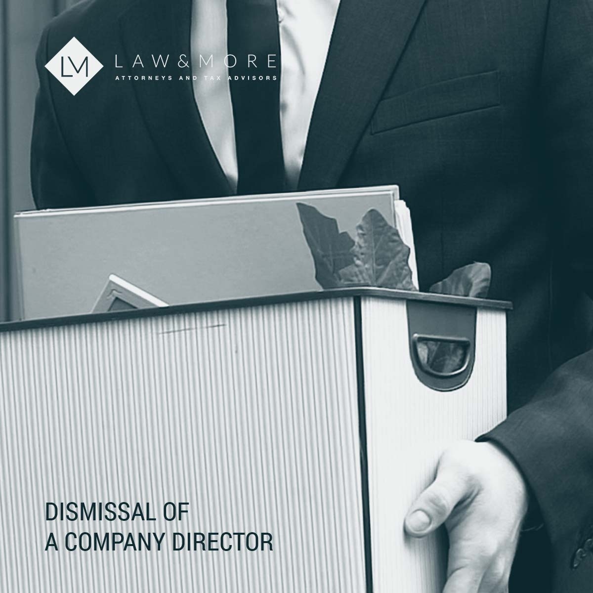 Dismissal of a company director image 1x1